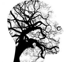 Wsparcie psychologiczno – pedagogiczne